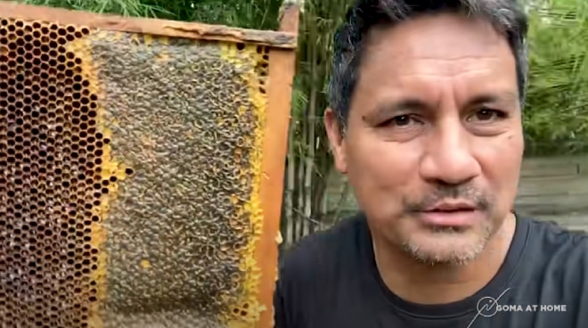 WATCH: Richard Gomez shows how to harvest, extract honey in his backyard in Ormoc