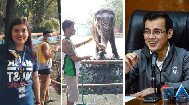 Mayor Isko Moreno thanks BTS fan group for donating food, supplies for Manila Zoo's elephant Mali